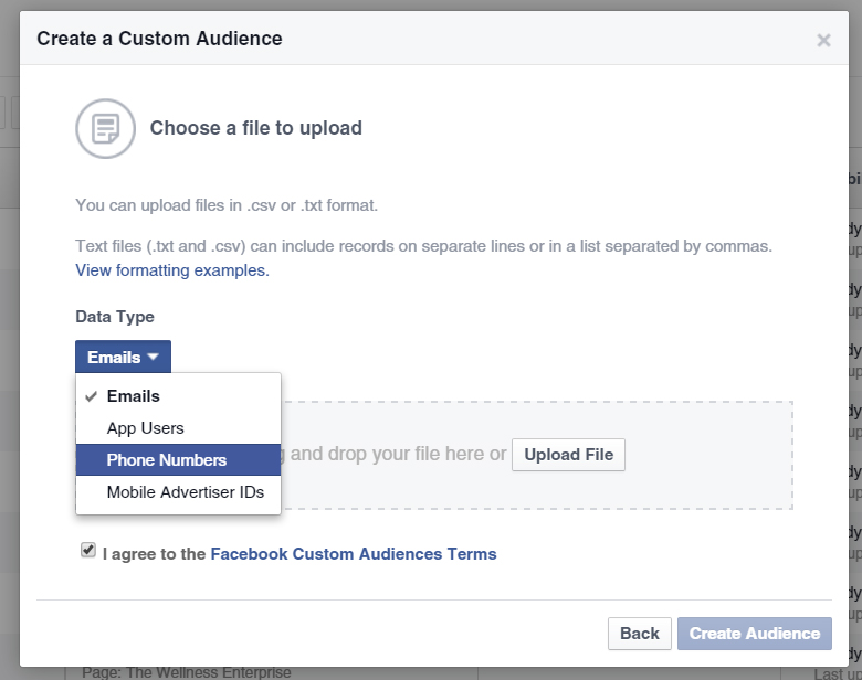 Uploading The List Of Email Addresses Or Phone Numbers Of Prospects In Facebook.