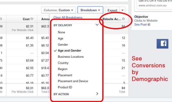 Facebook Ad Demographic Report