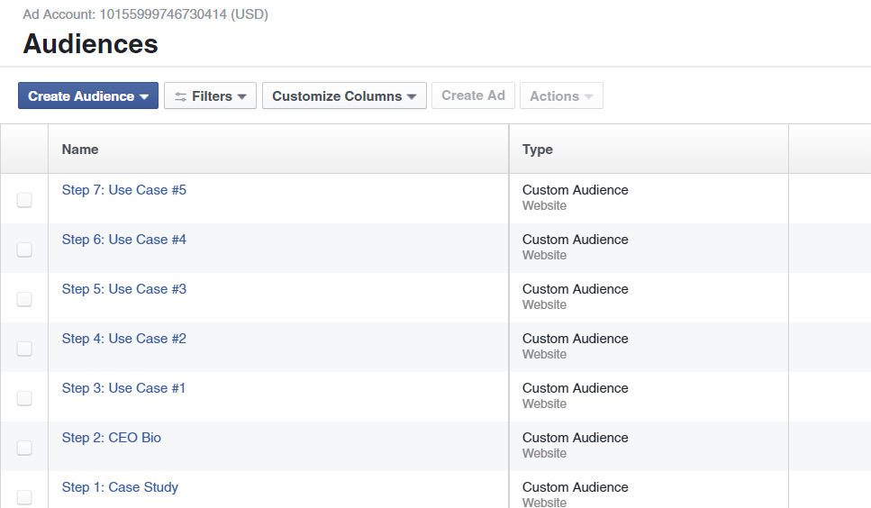 Customizing Audience Sample