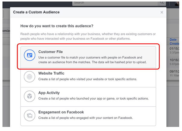 Facebook Creat a Customer Audience option